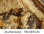 Small photo of Hexahedral cells are filled with viscous flower honey, on top a thin layer of beeswax. A natural product delivered from a beehive.