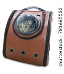 Tabby Cat In Traveler Backpack...