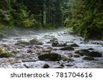 mountain river in summer with... | Shutterstock . vector #781704616