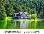 wooden lake house inside forest ... | Shutterstock . vector #781733896