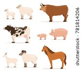 animals on farm. lamb  piglet ... | Shutterstock . vector #781814206