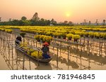 sa dec flower village   sa dec... | Shutterstock . vector #781946845