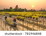 sa dec flower village   sa dec... | Shutterstock . vector #781946848