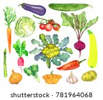 vegetables collection ... | Shutterstock . vector #781964068