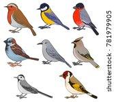 vector set of birds  hand drawn ... | Shutterstock .eps vector #781979905