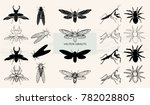 vector illustration. various... | Shutterstock .eps vector #782028805