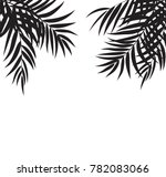 beautifil palm tree leaf ... | Shutterstock .eps vector #782083066