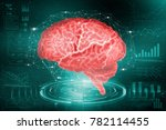 The Human Brain. The Study Of...