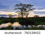beautiful landscape with water... | Shutterstock . vector #782138422