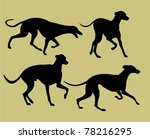 silhouettes of greyhounds   Shutterstock .eps vector #78216295