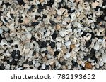 Small photo of Broken and eroded shells, mostly whelks (Buccinum undatum), on a stony beach with multi coloured pebbles and sea coal forming a nice collage effect.