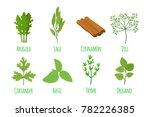 herbs and spices  basil  thyme  ... | Shutterstock .eps vector #782226385