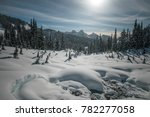 Mount Rainier Hiking Views