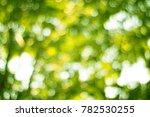 tree leaves of bokeh for nature ... | Shutterstock . vector #782530255