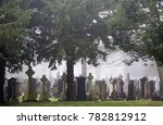 Gravestones Under The Trees In...