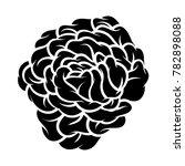 flower rose  black and white.... | Shutterstock .eps vector #782898088