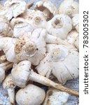 soft mushroom boil mushroom and ... | Shutterstock . vector #783005302