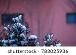 tree covered with snow | Shutterstock . vector #783025936
