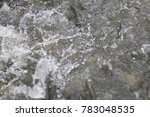 close up fish herd eating food... | Shutterstock . vector #783048535