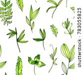 seamless pattern with... | Shutterstock . vector #783055825