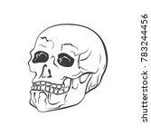 hipster skull vector... | Shutterstock .eps vector #783244456