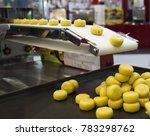 food in conveyor of machine  ... | Shutterstock . vector #783298762