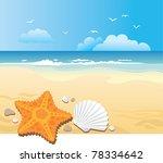 Beach Star Fish