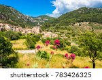 village of valldemossa mallorca ... | Shutterstock . vector #783426325