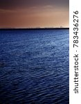 landscape of marsh full of... | Shutterstock . vector #783436276