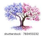 The Jacaranda And Sakura...