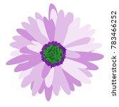 gerbera daisy isolated. vector... | Shutterstock .eps vector #783466252