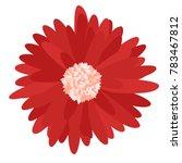 gerbera daisy isolated. vector... | Shutterstock .eps vector #783467812