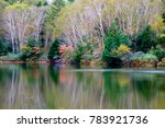 the quiet lake of autumn  | Shutterstock . vector #783921736