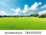 green meadow and trees... | Shutterstock . vector #784102552