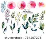 watercolor red roses and green... | Shutterstock . vector #784207276