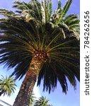 new zealand picton | Shutterstock . vector #784262656