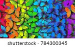 Stock photo colors of rainbow pattern of multicolored butterflies morpho texture background 784300345