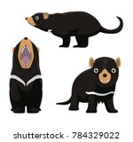 tasmanian devil cute cartoon... | Shutterstock .eps vector #784329022