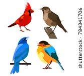 vector flat illustration of... | Shutterstock .eps vector #784341706