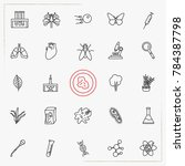 biology line icons set | Shutterstock .eps vector #784387798