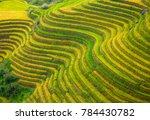 the longsheng rice terraces... | Shutterstock . vector #784430782