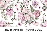 seamless pattern with flowers... | Shutterstock . vector #784458082