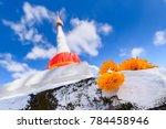 nonthaburi  thailand   december ... | Shutterstock . vector #784458946