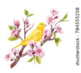 Watercolor Spring Illustration...