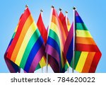 flags of the lgbt community on... | Shutterstock . vector #784620022