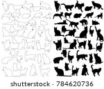 vector  isolated silhouette cat ... | Shutterstock .eps vector #784620736