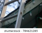 ladder leaning up on roof to... | Shutterstock . vector #784621285