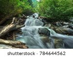 Waterfalls And Trees  Nature