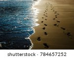 two pairs of footprints in the... | Shutterstock . vector #784657252