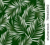 tropical palm leaves  jungle... | Shutterstock .eps vector #784660342